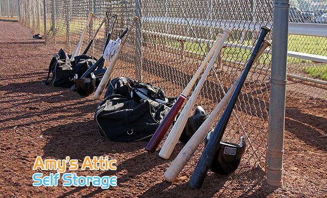 Storage Baseball Equipment Texas